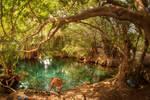 Kikuletwa Hot Springs, Tanzania