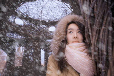 Jackee Jing, Montreal - Infrared and Visible Blue