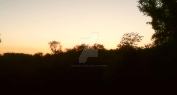 Sunset by Subarashii-Tasogare