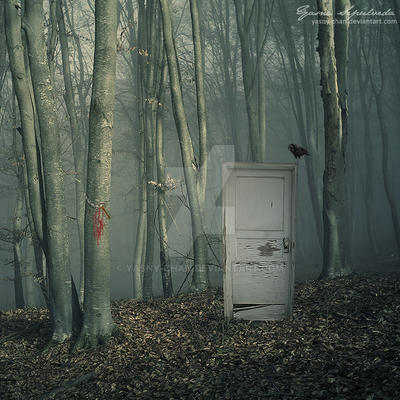 The Door by Yasny-chan