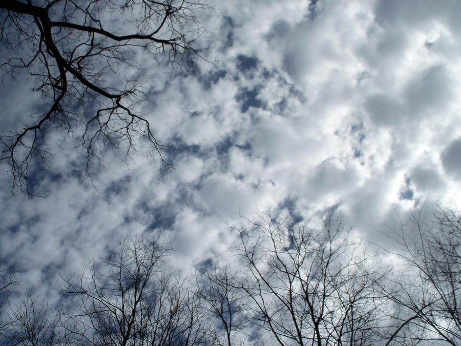 Last winter skies by artsya95