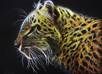 CAT by Wilku1000i1