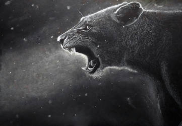 Lioness by Wilku1000i1