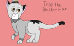 Troy the Blackmailer (15/30)
