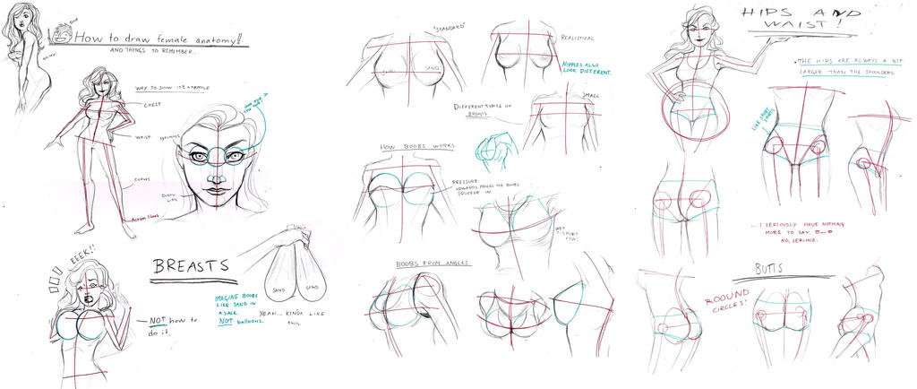 Female Anatomy Tutorial By Bleedingheartworks On Deviantart
