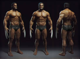Wolverine anatomy by Mikeypetrov