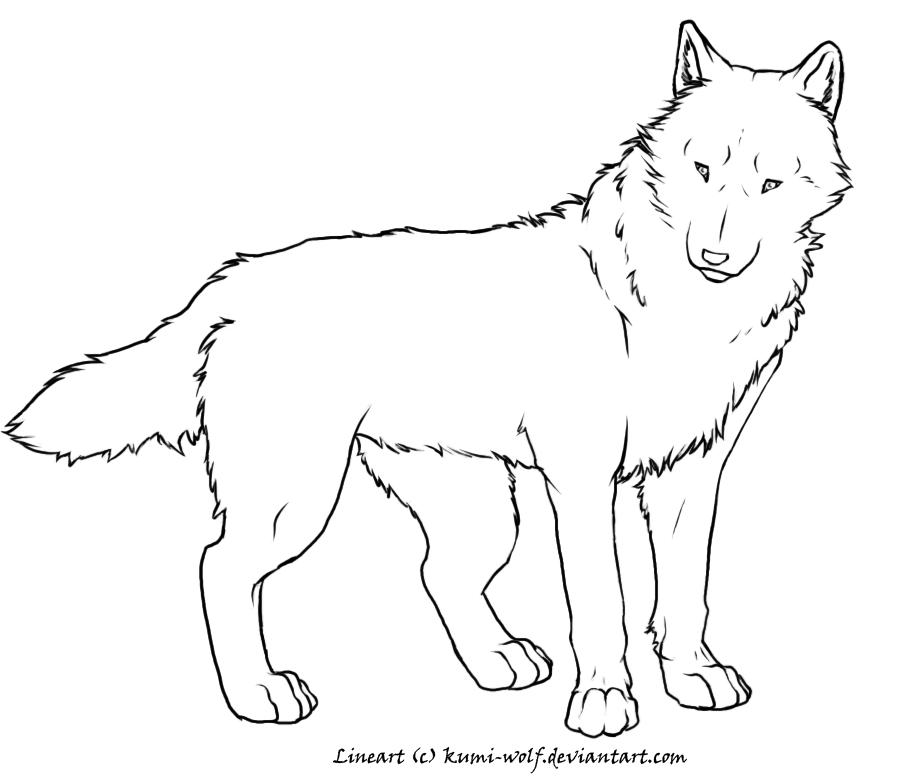 Lineart Wolf : Free wolf lineart by kumi on deviantart