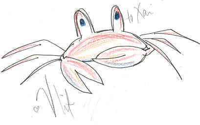 A crab by SudsForBreakfast