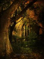 fairy corner by AlicjaRodzik