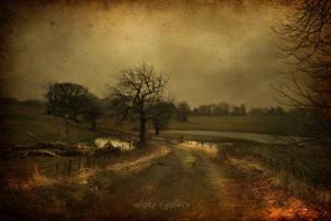 looking back by AlicjaRodzik