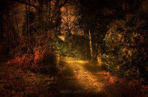 magical sunset by AlicjaRodzik