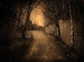 hush.... by AlicjaRodzik