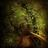 fairy forest II by AlicjaRodzik