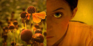 foretaste of autumn II