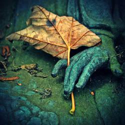 autumn tears by AlicjaRodzik