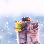 waiting for winter II by AlicjaRodzik