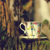 cinnamon coffee by AlicjaRodzik