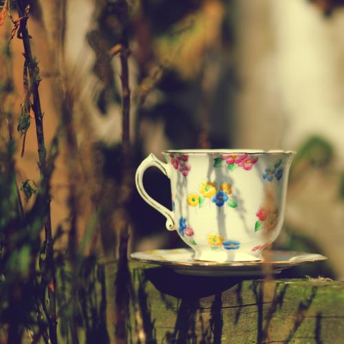 najromanticnija soljica za kafu...caj - Page 2 F3678bda91fc4037aba07980e2aa38b3