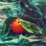 apprehension of hue by AlicjaRodzik