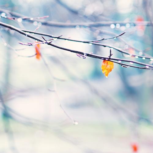 so beautiful.... by AlicjaRodzik
