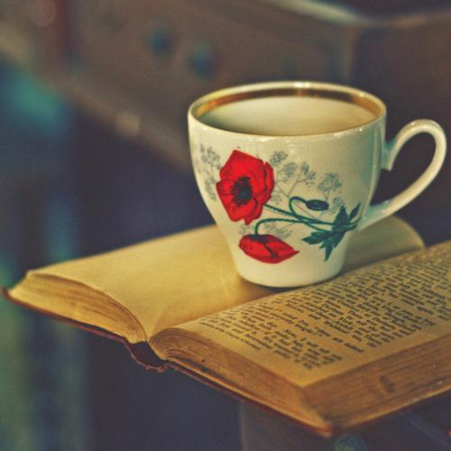 najromanticnija soljica za kafu...caj 8db4a220b4bdba2dc7b3f393f30bddcb-d2zlovz