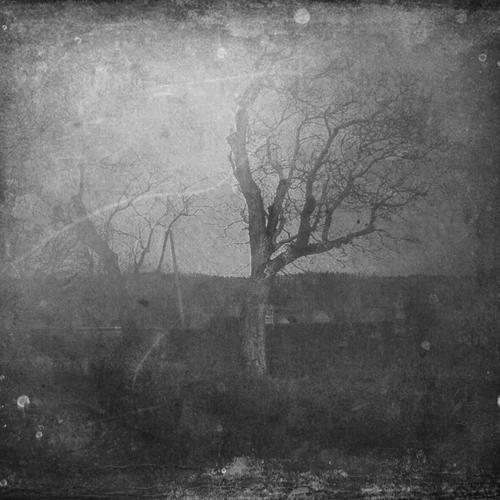 a passage by AlicjaRodzik