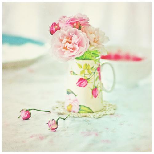 rosy afternoon by AlicjaRodzik