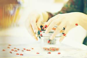 ladybug theme by AlicjaRodzik