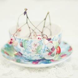 cup of wonders