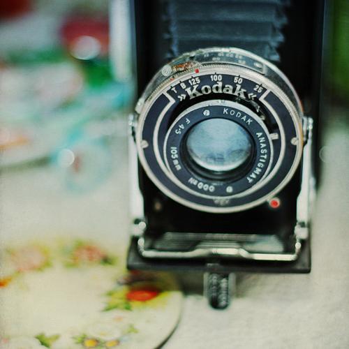 love you Mr.Kodak by AlicjaRodzik