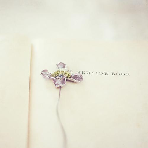 the bedside book by AlicjaRodzik