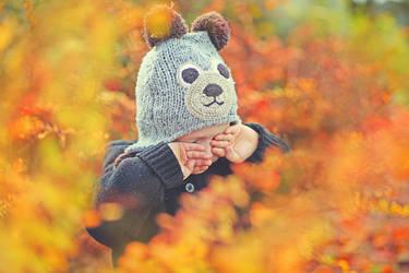 it's autumn, little bear II by AlicjaRodzik