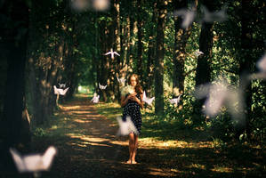 birds by nazarkina
