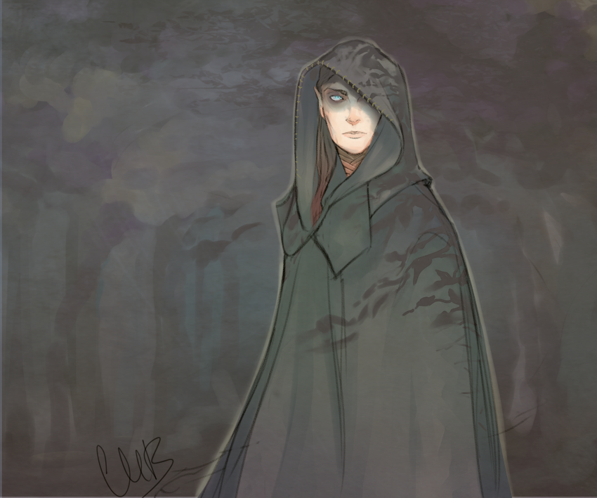 i_saw_an_elf_once_by_iseijin-d5y9xey.png