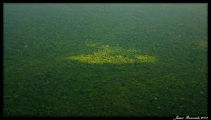 Guyana 2009 - Day 288 by jmbroscombe