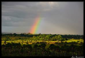 Guyana 2010 - Day 310 by jmbroscombe