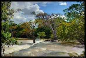 Guyana 2010 - Day 391 by jmbroscombe