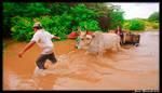 Guyana 2010 - Day 443