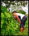Guyana 2010 - Day 444