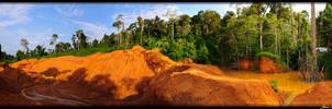 Guyana 2010 - Day 482 by jmbroscombe