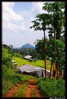 Guyana 2010 - Day 484 by jmbroscombe