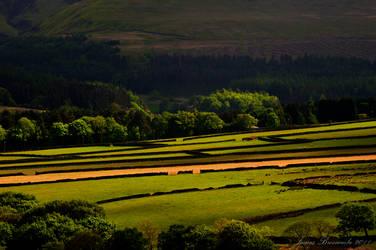 Holme Valley fields