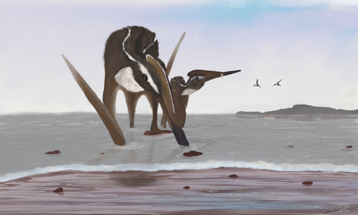 Aerodactylus scolopaciceps by Dyn0saur