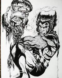 wolverine bs hulk by TheWolfMaria