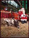 Reindeer, santa