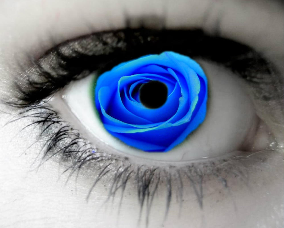 blue rose eye by opium-luvs-blue