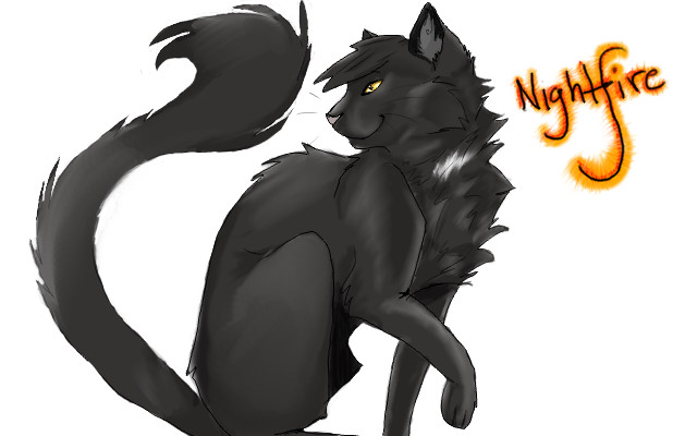 Death is on the wind [Warrior Cats Role-play] Nightfire_by_Cats_of_FireClan