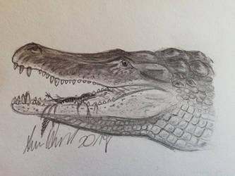 ArchosaurArtApril: Day 17 Deinosuchus by ArminReindl
