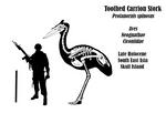 Skull Island: Carrion Stork Skeletal
