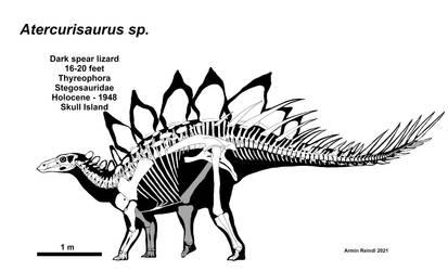 The World of Kong: Atercurisaurus